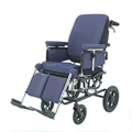 Picture of Carrozzine reclinabile e basculante BASCULA 300 - Chinesport xpb903.
