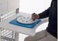 Picture of Moduli ausili per riabilitazione RUOTA - Chinesport AR10049